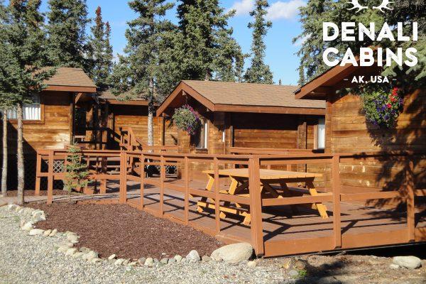 Superbe Denali Cabins